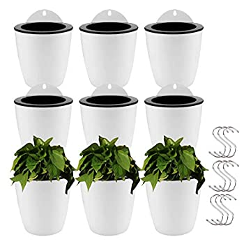Best plastic wall pots Reviews