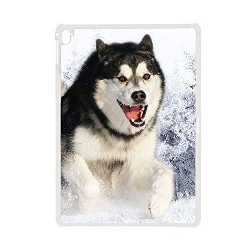 For Man Compatible With Apple Ipad Pro 12.9 Inch Plastic Phone Shell Drop Resistance Design Siberian Husky 5
