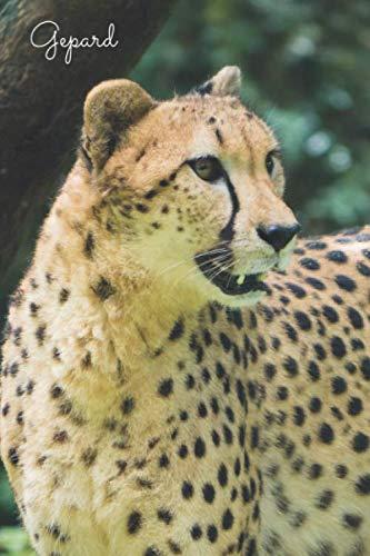 Gepard: Notizbuch / Tagebuch Wildkatze - DIN A5 120 Seiten liniert - Geschenk Katzenliebhaber