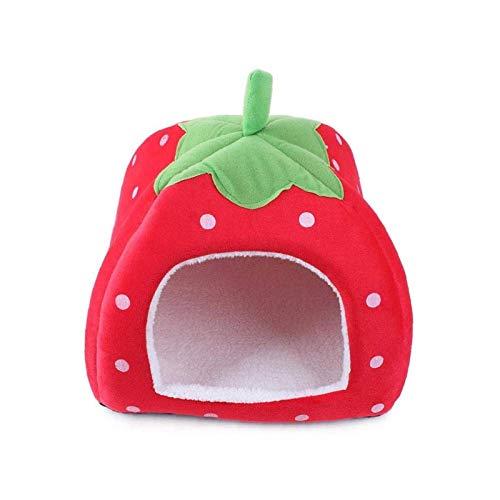 Esponja de algodón suave estilo fresa, para cachorros, gatos, perros, mascotas, color rojo para interior y exterior