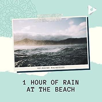 1 Hour of Rain at the Beach
