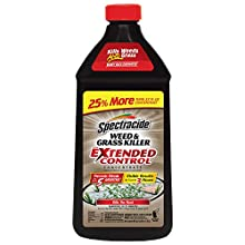 Spectracide Weed & Grass Killer With Extended Control