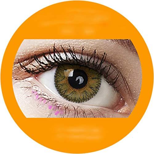 Braun: Farbige Jahres Kontaktlinsen ohne Stärke mit Aufbewahrungsbox braun blau grün grau türkis weich als 2er Pack (2 Stück) angenehm zu tragen, perfekt für helle und dunkle Augen
