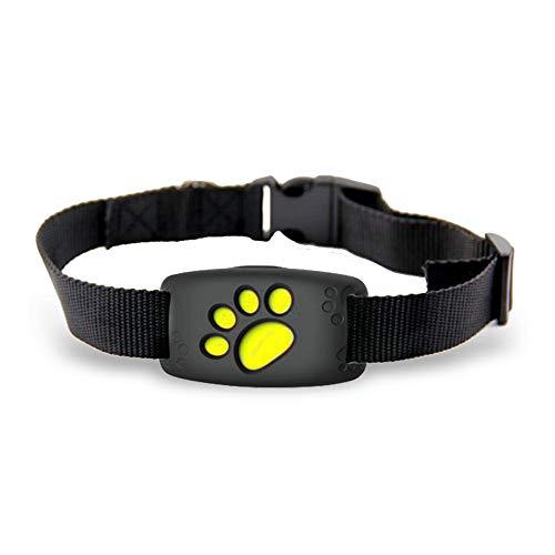 PULLEY Collar impermeable de posicionamiento de mascotas, localizador de seguimiento en tiempo real, dispositivo de seguimiento de monitor, adecuado para perros y gatos