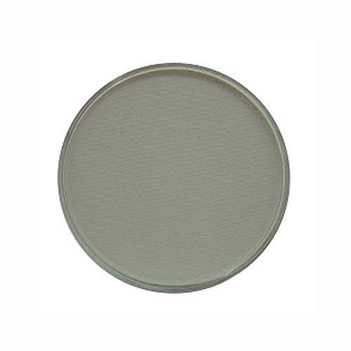 PanPastel Peinture ultra douce pour artiste pastel, gris neutre par Panpastel