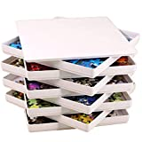 PUZZLE EZ Puzzle Sorting Trays with Lid and 8 Trays Puzzle EZ Jigsaw Puzzle Sorters Fit 1000 Pieces Puzzle Gift for Puzzlers