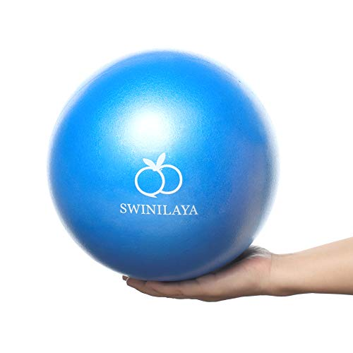 Yoga Pilates Palla da Esercizio Mini 9,8 Pollici per Allenamento dell equilibrio di stabilità per Terapia Fisica di Allenamento di Base