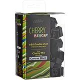 センチュリー 「KB Paradise CHERRY MX軸キーキャップ」シリーズ 104英語キーボード用 2色成型カラー (カーボンブラック カラー) CK-104CB