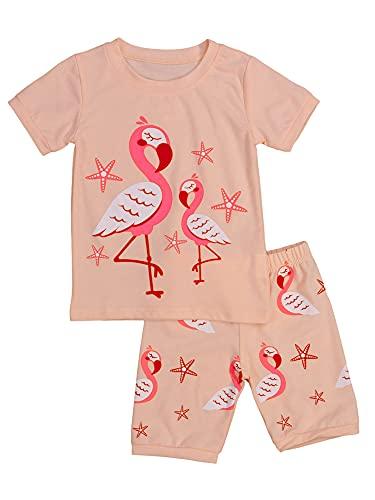 Camiseta de Manga Corta con Estampado de flamencos Camiseta de Manga Corta + Pantalones Cortos de Cintura elástica Trajes de Verano para niñas pequeñas Trajes Casuales de 2 Piezas (Pink, 5-6 Years)