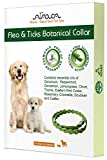flea and tick control botanical collar by Arava