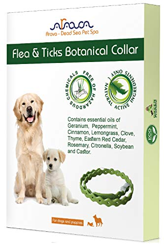 Arava Flea & Tick Prevention Collar - for Dogs & Puppies - Length-22