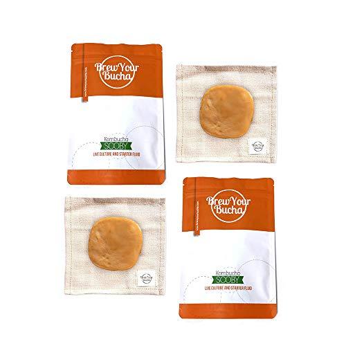 Brew Your Bucha Kombucha SCOBY con líquido de Arranque. SCOBY cultivado con Nuestro té de Oro Negro Yunnan Premium seleccionado a Mano (2 SCOBY)