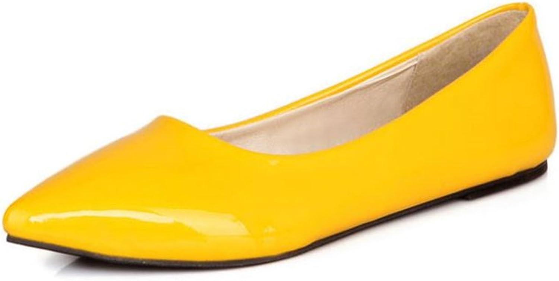 Women's Ballet Flat Pointy Toe Leather Ballerina Slip On Dress shoes