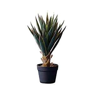 LXLTL Artificial Succulent Potted Plants,Decorative Vibrant Green Faux Flowers Fake Plants Ideal for Home, Office and Outdoor Decor Artificial Plants