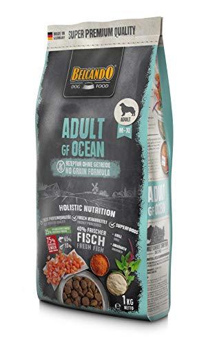 Belcando Adult GF Ocean [1 kg] getreidefreies Hundefutter   Sortenreines Trockenfutter ohne Getreide   Alleinfutter für ausgewachsene Hunde ab 1 Jahr