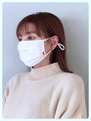 マスク 日本製 洗える 抗ウイルス 抗菌 防臭 感染対策 クレンゼ プリーツ立体 2枚入り 繰り返し 耳が痛くならない 調節 5層 安全 国内製造 高耐久