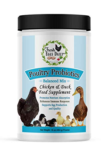 Fresh Eggs Daily Poultry Probiotics Chicken and Duck Feed Supplement