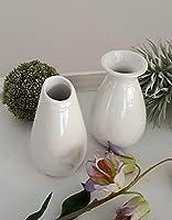 2er Set Mini Vasen aus Porzellan perlmutt weiß Tischdeko Wohndeko