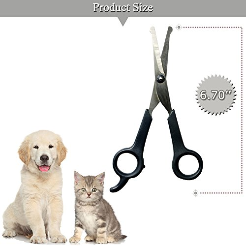 Professional Pet Grooming Scissors with Round Tip Stainless Steel Dog Eye Cutter...