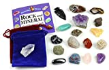 Dancing Bear Rock And Mineral Collection Educational
