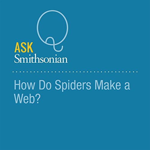How Do Spiders Make a Web? audiobook cover art