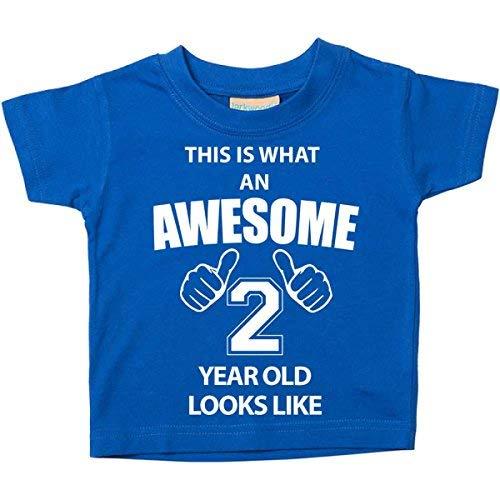 Ce T-shirt est ce qu'un Awesome 2ans Looks Like Bleu 2nd Birthday bébé enfant Disponible en tailles 0-6mois à 14-15ans nouveau bébé cadeau Sister - Bleu, 18-24 Months