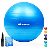 75 Exercise Balls Review and Comparison