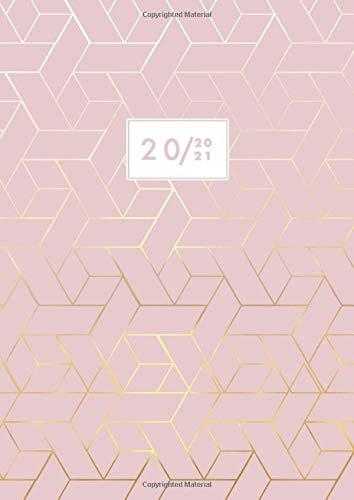Agenda 2020 2021 Giornaliera Grande: 2 Pagine per Giorno, Agenda 12 Mesi, Luglio 2020 - Giugno 2021, A4, 21x29,7 cm, Rosa
