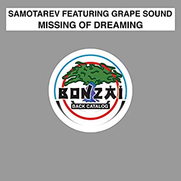 Missing Of Dreaming feat. Grape Sound