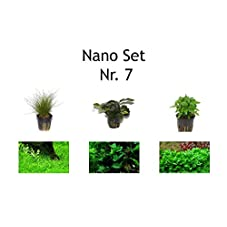 Tropica Nano Set mit 3 Einfachen kleinen Topf Pflanzen Aquariumpflanzenset Nr.7