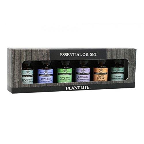Plantlife 100% Pure Essential Outlet excellence SALE Oil Basic Set 6 Sampler ml Lav 10
