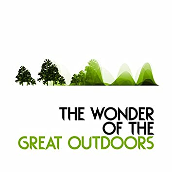 The Wonder of the Great Outdoors