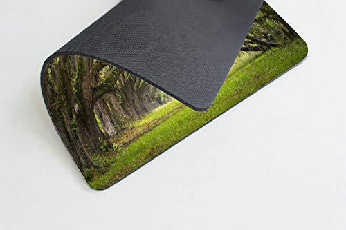 Smooffly Gaming Mouse Pad Custom,Oaks Avenue Charleston SC Plantation Live Oak Trees Forest Landscape Mousepad Non-Slip Rubber Rectangle Mouse Pads for Computers Laptop Photo #3