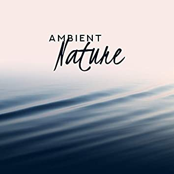 Ambient Nature – Calming Sounds for Relaxation, Sleep, Healing Music for Insomnia, Peaceful Noises, Nature Sounds at Night, Zen