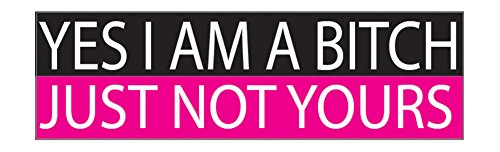 Rogue River Tactical Funny Auto Decal Bumper Sticker for Women Girls Yes I Am A Bitch Just Not Yours...