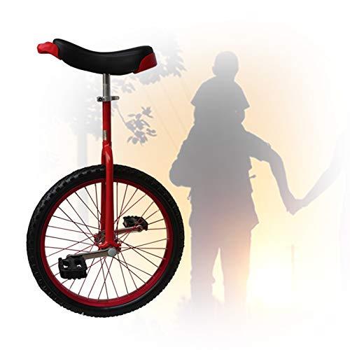 GAOYUY Monociclos De 16/18/20/24 Pulgadas para Adultos Y Niños, Altura Ajustable Pedales De Plástico Redondeados Sillín Ergonómico Contorneado Deportes De Ciclismo Al Aire Libre 3 Colores