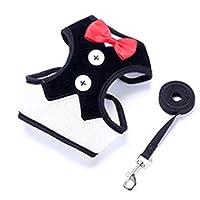 ペットトラクションロープ犬の散歩アーティファクト小型犬のイブニングドレスチェストストラップペット用品 (Color : Black, Size : M)