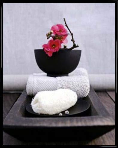 1art1 Flowers Poster Art Print and Frame (Plastic) - Japanese Art of Flower Arrangement, Amélie Vuillon (20 x 16 inches)
