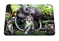 22cmx18cm マウスパッド (猿の家族の苔石) パターンカスタムの マウスパッド