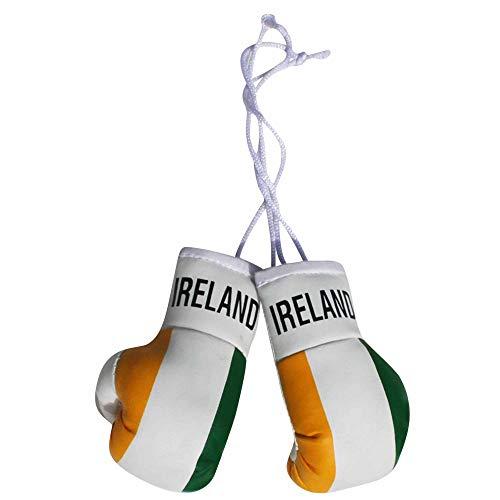 Mini-Boxhandschuhe mit Irland-Flagge, für Auto oder Zuhause