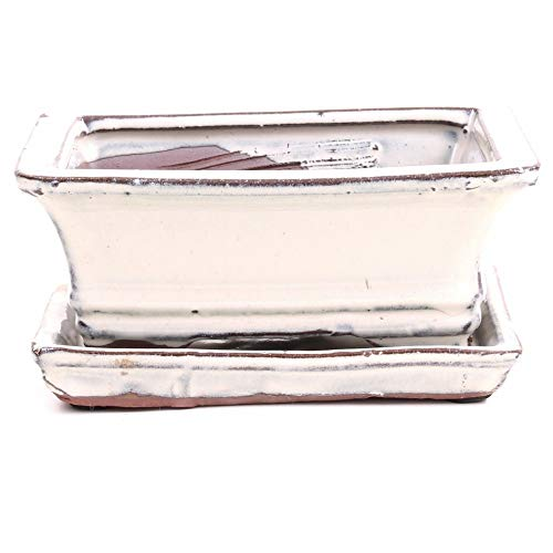 Bonsai - Schale eckig, 15,5 x 11 x 6,5 cm, Creme, mit Untersetzer 23989