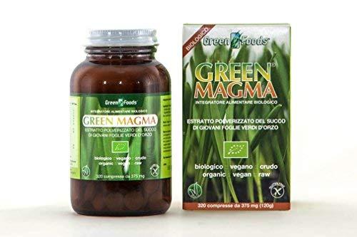 Green Magma - Integratore alimentare a base di succo di erba d'orzo, 320 Compresse, 120 g