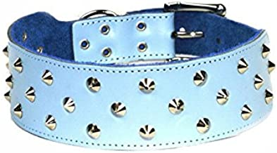 Dogue Stud Muffin Leather Dog Collar, Blue