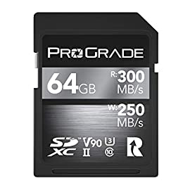 SD UHS-II 64GB Card V90 –Up to 250MB/s Write Speed and 300 MB/s Read Speed | for Professional Vloggers, Filmmakers… 12 TURN YOUR PASSION INTO PROFIT – CALLING ALL VLOGGERS, INFLUENCERS, FILMMAKERS, PHOTOGRAPHERS & VIDEOGRAPHERS: Become an instant pro by adding our professional line of SD cards to your kit. Focus on curating the finest content for your clients/audience while our SDXC Cards do the backend heavy lifting of storing and uploading your work efficiently every time. LIGHTING FAST 250MB/s WRITE SPEED – INSTANTLY SAVE high resolution recordings to your device, ALL WHILE maintaining super sharp focus. STOP waiting around for your images/recordings to upload, with our Read Speed of 300 MB/s even your most robust work can be uploaded in seconds! COUNTERFEITS ARE CRUMBLED: CUSTOM LASER-ETCHED SERIAL NUMBERS keep cheap counterfeiters at bay because our SD Cards are so difficult to mimic. Forged in our premium ProGrade Lab, we meticulously inspect each SDXC Memory Card before it ships out and laser etch a custom code on each one.