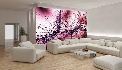 Delester Design Décor mural Papier peint - Rosée du matin sur fleurs de pissenlit et fond rose