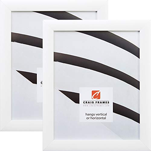 Craig Frames 23247812 12 x 18 Inch Picture Frame, White, Set of 2