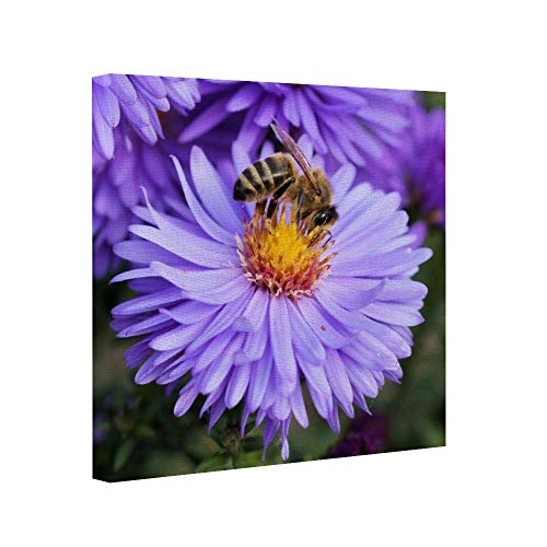 cwb2jcwb2jcwb2j Wooden Framed Print Canvas Wall Art Square Bee Insects Flowers Plants Collect Nectar Canvas Print Bedroom Bathroom Decoratie