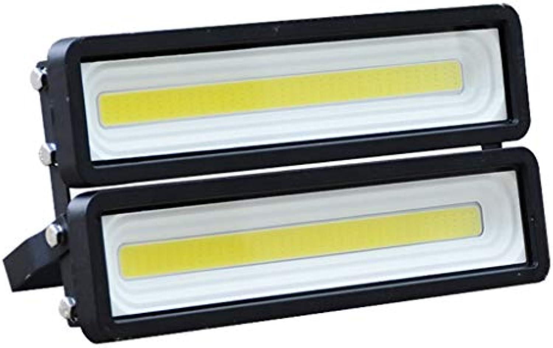 LED Flutlichtstrahler IP65 Wasserdichte Sicherheitslampe Hof Park Kunst Füllen Licht Outdoor Worker WKZ Fluter Strahler (Farbe   Warmes Licht-100W)