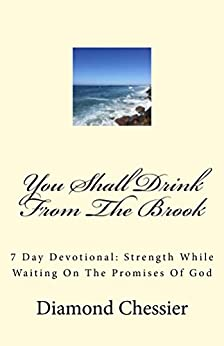 You Shall Drink From The Brook: 7 Day Devotional: Strength While Waiting On The Promises Of God by [Diamond Chessier]