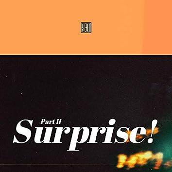 Surprise, Pt. 2